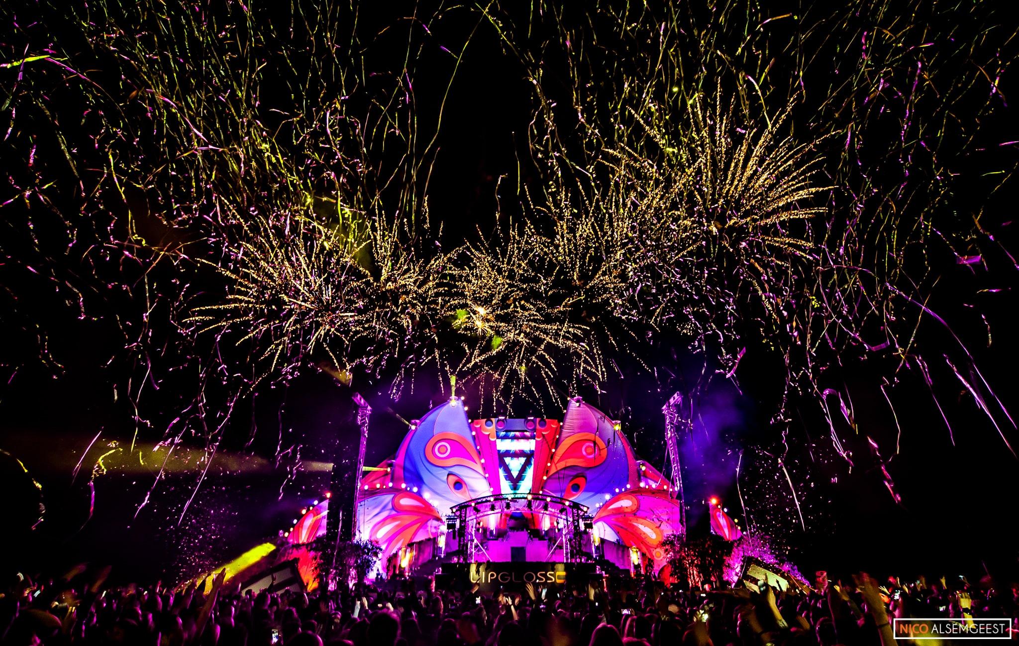 Wildness Festival 2015